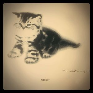 Clare Turlay Newberry Cats & Kittens Drawings